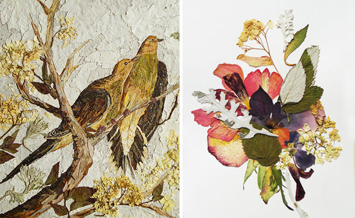 I Used 30 Plant Species To Create These Botanical Illustrations