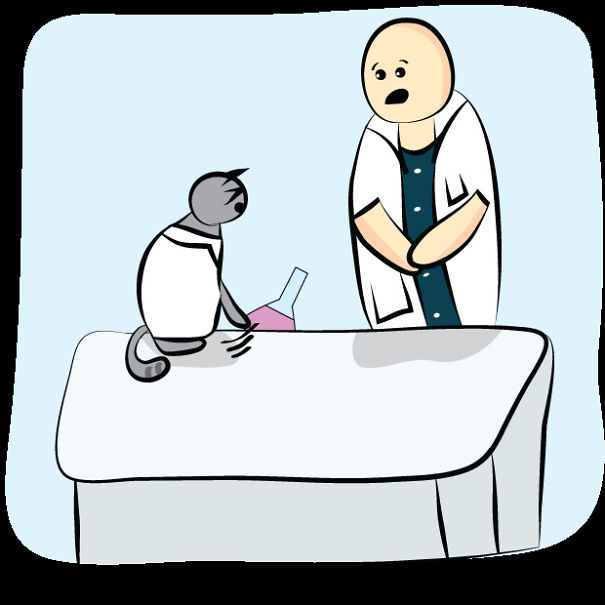 Science Cat At Work