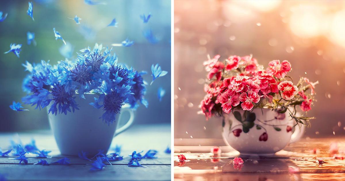 I Create Whimsical Images Using Flowers Bored Panda