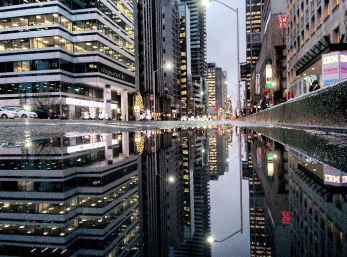 The Parallel Worlds Of Puddles In Toronto
