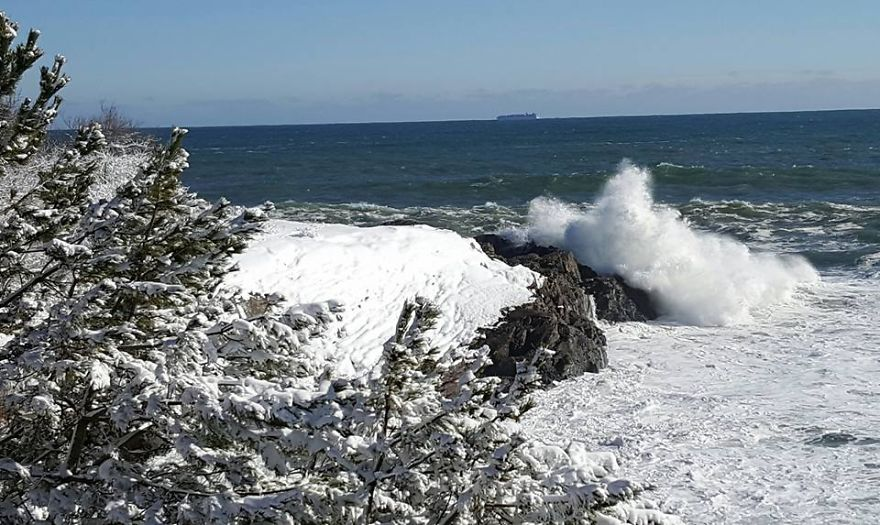 Chunky Tide In Massachusetts The Day After The Storm