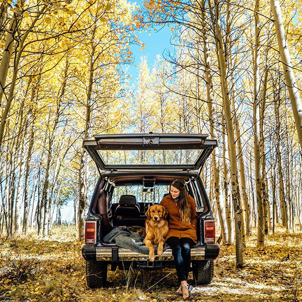 traveling-dog-aspen-the-mountain-pup-instagram-44