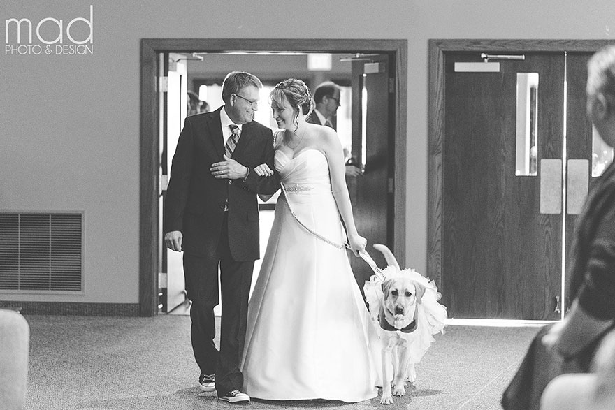 wedding-service-dog-tutu-dress-maddie-peschong-mad-photo-design-3