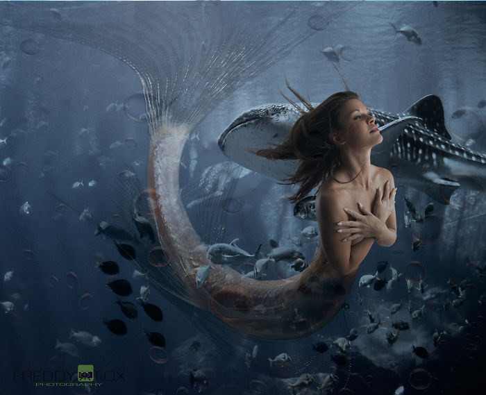 I Help Women Realize Their Childhood Dream Of Becoming A Mermaid.