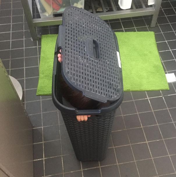 A Tisket, A Tasket ... A Kid In A Laundry Basket?