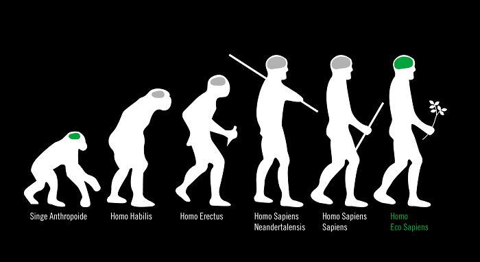 Homo Eco Sapiens - There Is A Hope