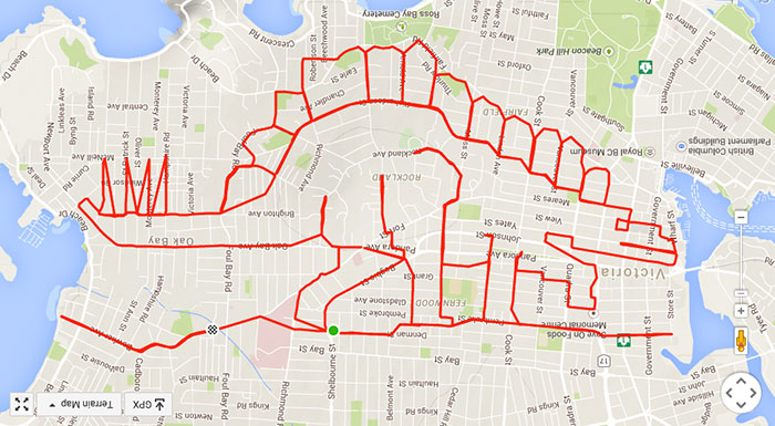 Dopey stegosaurus tramples Fernwood (44.4 km, 1 h 56 min)