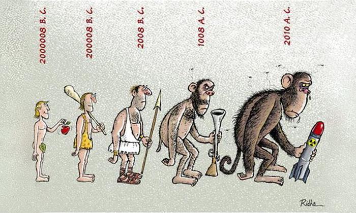 Darwinismus