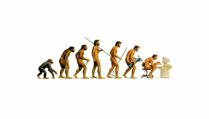 You Rarely See Any Other Evolution Chart