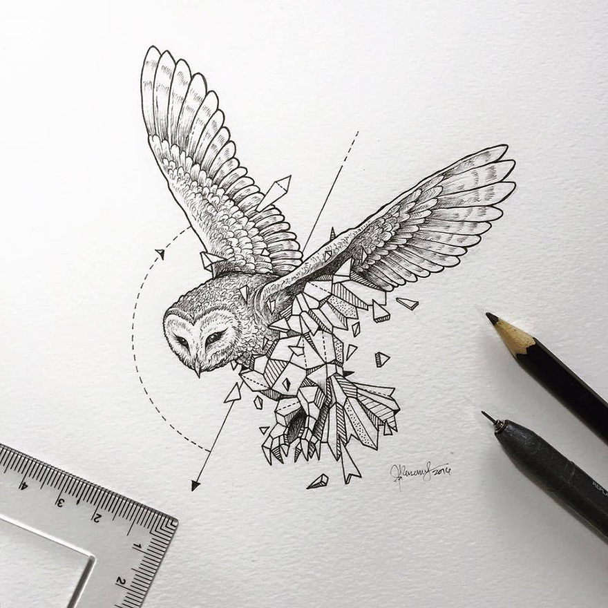 Intricate Drawings Of Wild Animals Fused With Geometric Shapes Bored