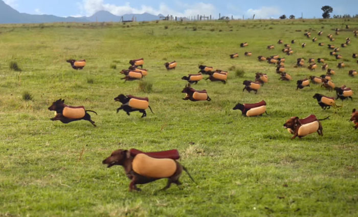 Hilarious Wiener Dog Stampede In Heinz Super Bowl Ad