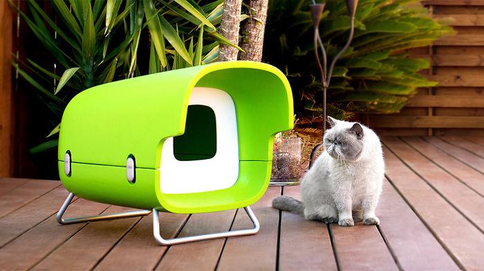 I Designed A Dream House For My Cat