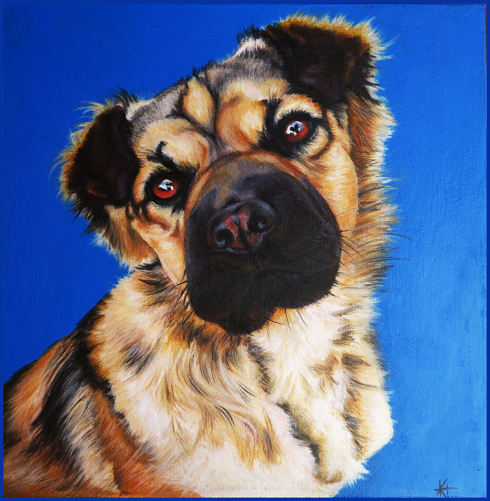 I Paint Pet Portraits One Hair At A Time
