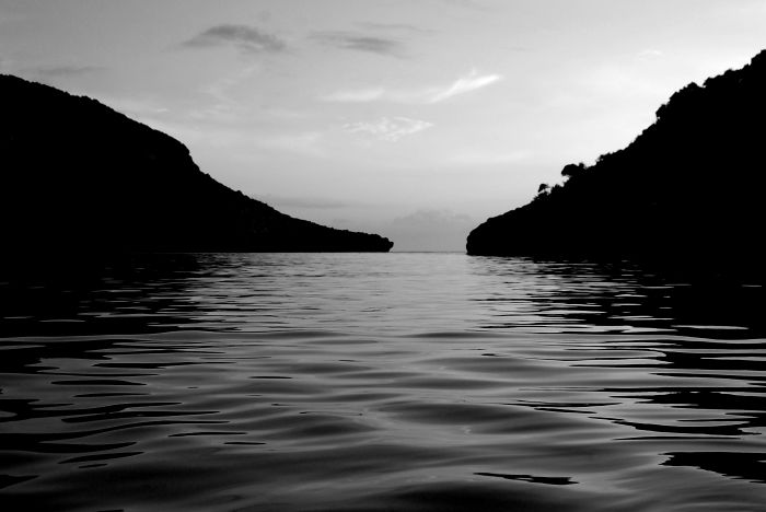 I Photograph Nature In Black And White