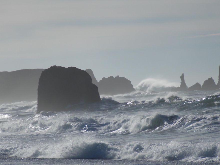Oregon Coast Brandon
