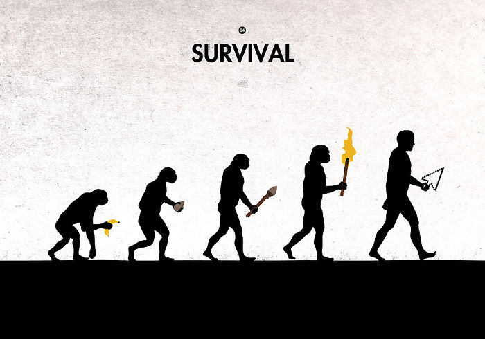 Survival By Maentis