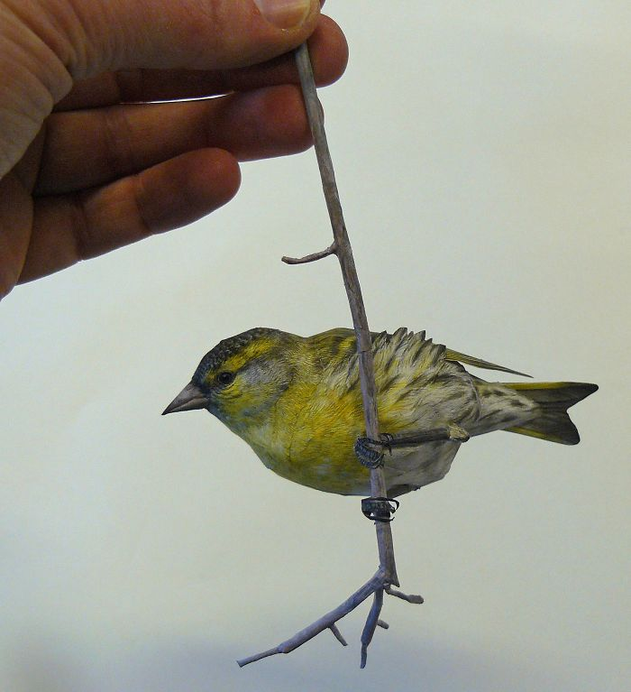 I Create Realistic Birds From Paper