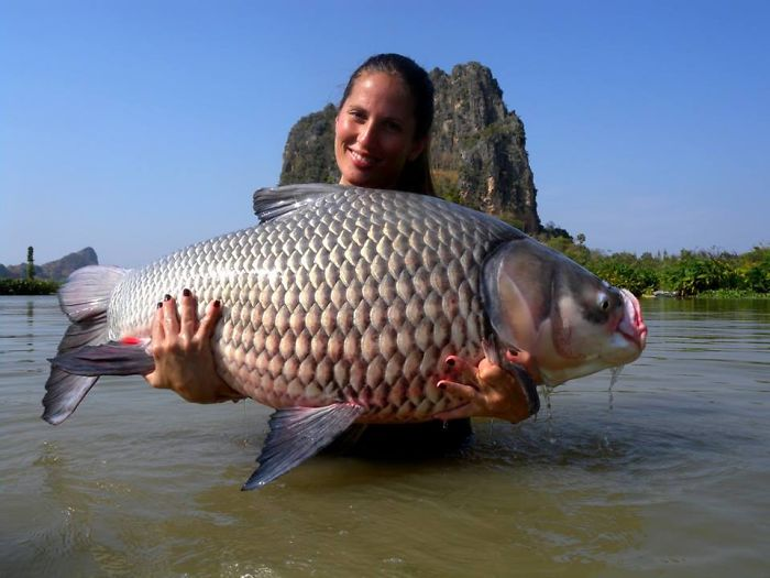 This secret lake in thailand has got worlds biggest fish for World largest fish