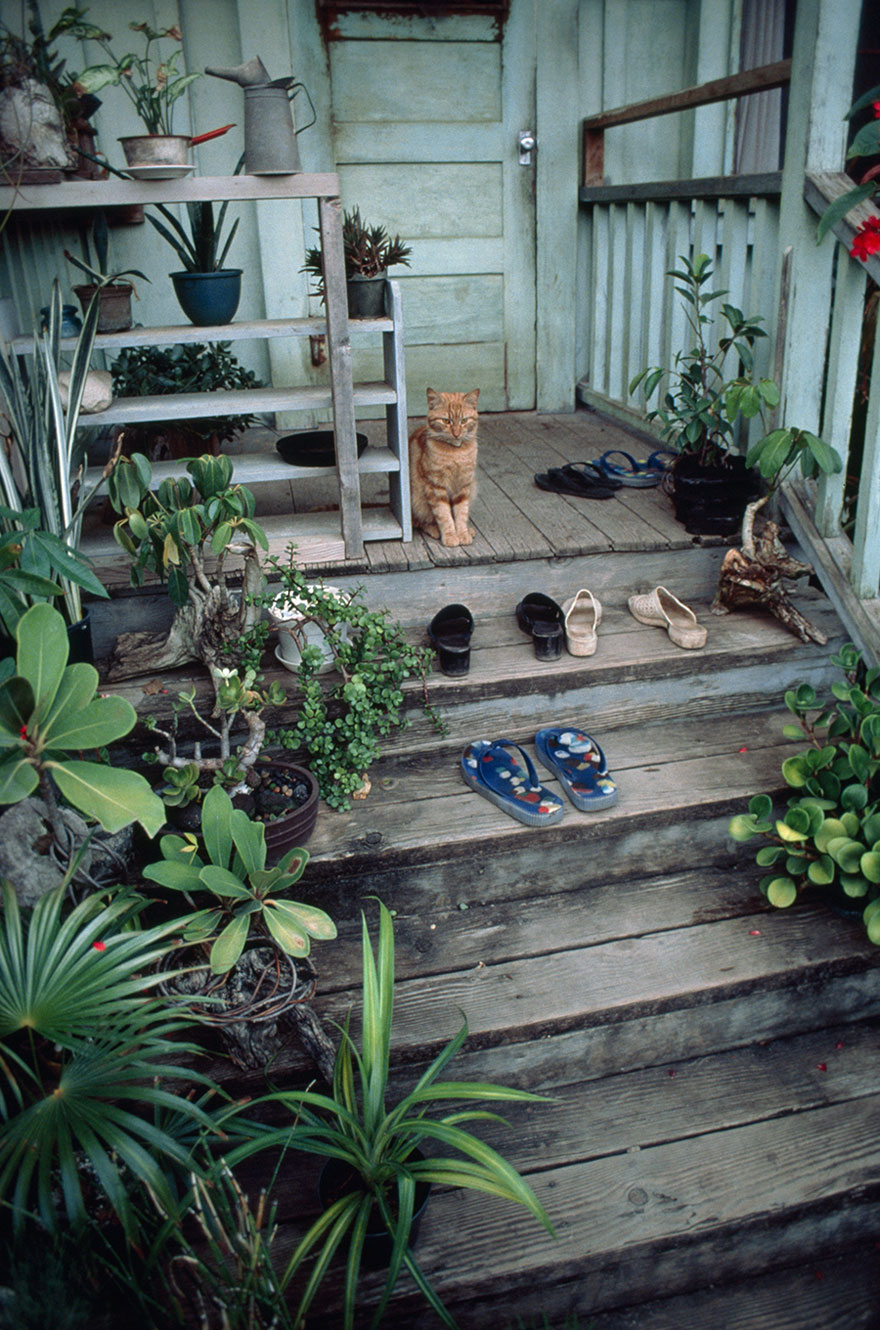 A Well-worn Stairway Leads To A House On Oahu's North Shore, November 1979