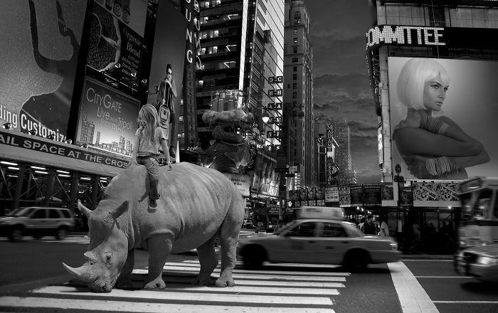 Nyc Rhino