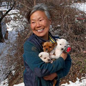 This South Korean Woman Is Raising 200 Dogs She Rescued From Being Killed