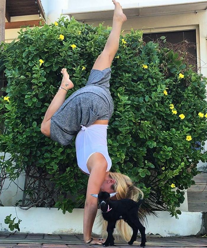 yoga-goat-penny-rachel-brathen-53