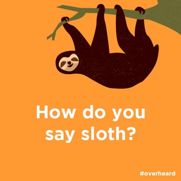 Sloth Or Slow-th