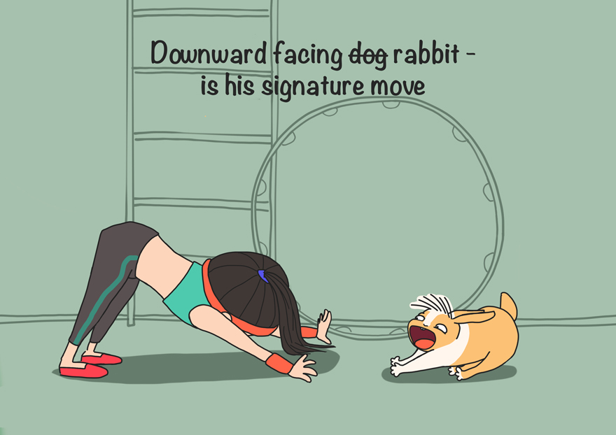 Downward Rabbit