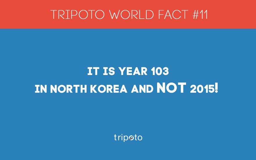 #11 Fact