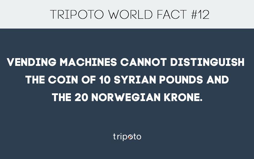 #12 Fact