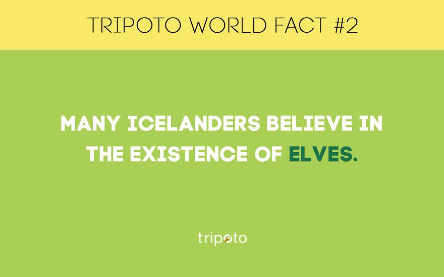 #2 Fact