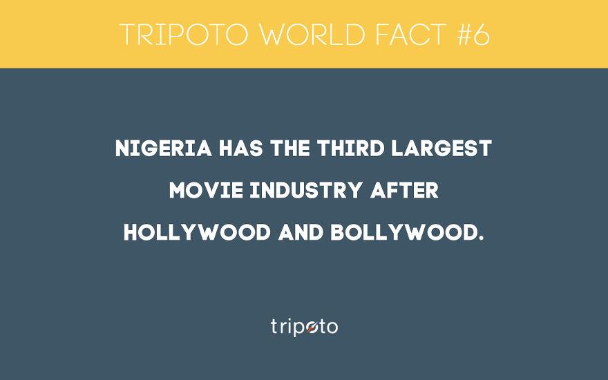 #6 Fact
