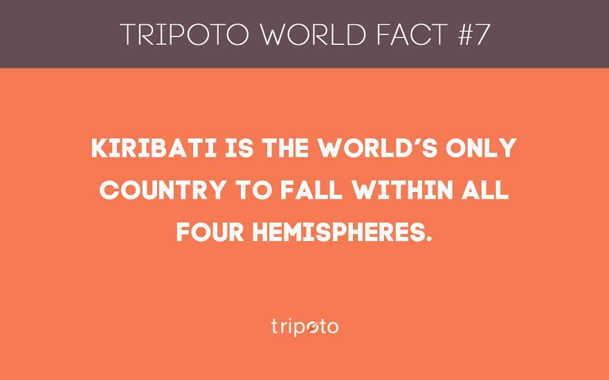 #7 Fact