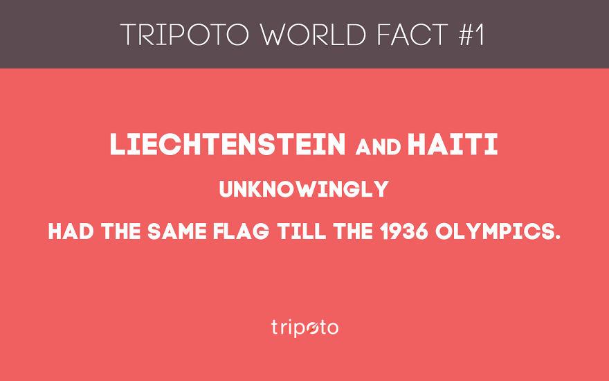 #1 Fact