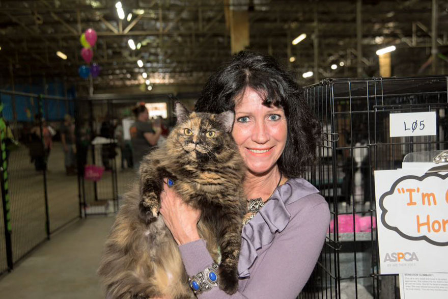 524-cats-dogs-adopted-adoption-event-aspca-5