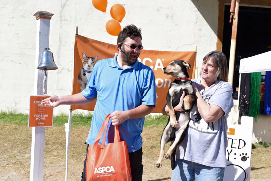 524-cats-dogs-adopted-adoption-event-aspca-8