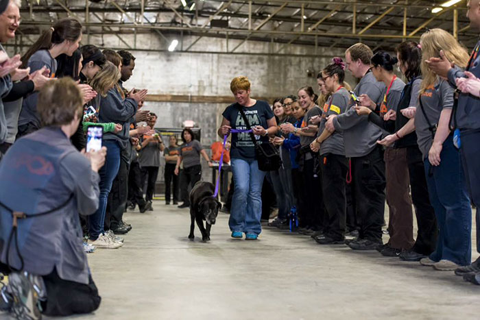 524 Dogs & Cats Attended A Massive Adoption Event – And They ALL Found Homes!