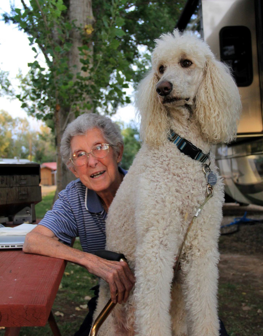 90-year-old-woman-cancer-road-trip-dog-miss-norma-10