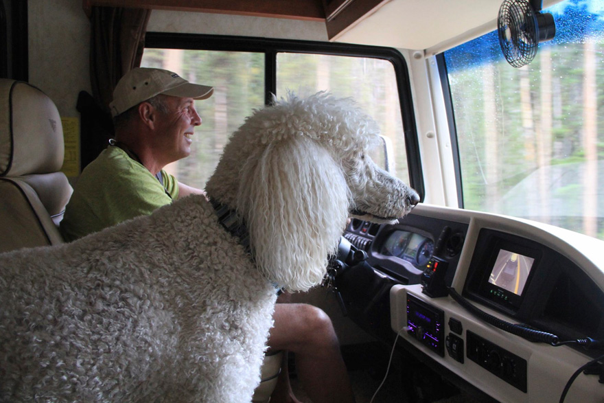 90-year-old-woman-cancer-road-trip-dog-miss-norma-12