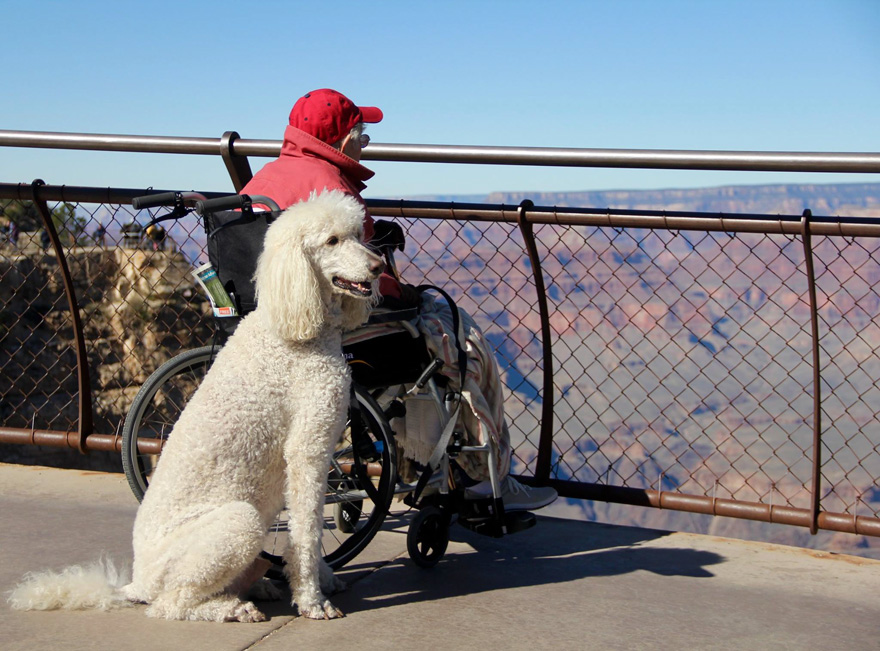 90-year-old-woman-cancer-road-trip-dog-miss-norma-15