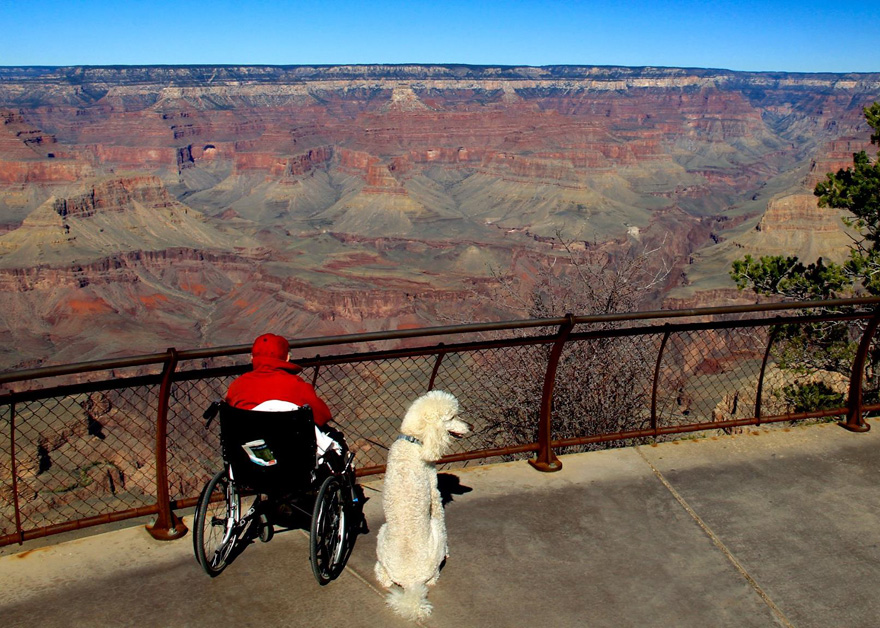 90-year-old-woman-cancer-road-trip-dog-miss-norma-16