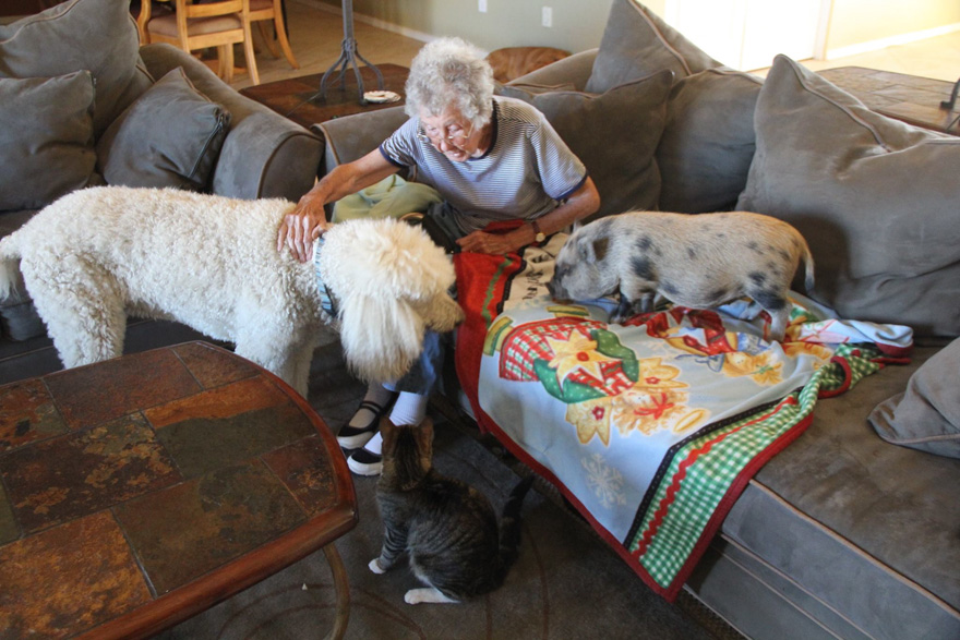 90-year-old-woman-cancer-road-trip-dog-miss-norma-7
