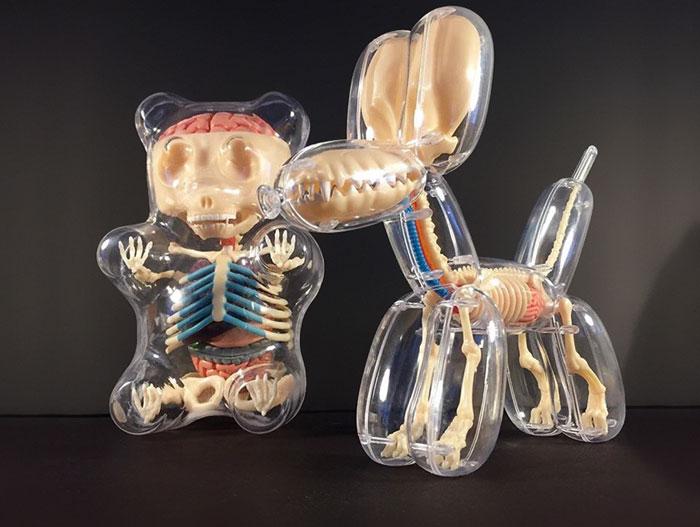 Anatomical Animal Balloons By Jason Freeny