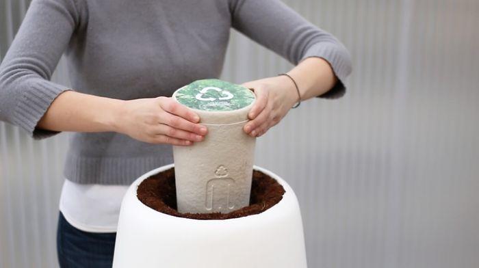 Planting A Bios Urn In The Bios Incube