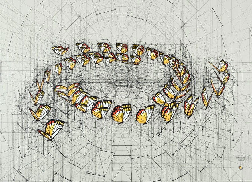 architect-reveals-the-secret-of-natures-beautiful-designs-in-a-hand-drawn-coloring-book (1)