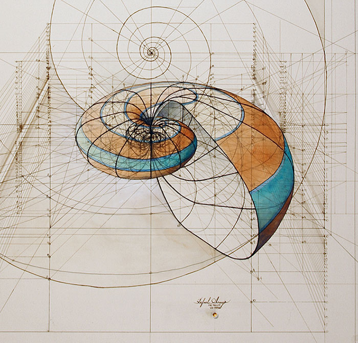 Hand-Drawn Coloring Book Reveals Mathematical Beauty Of Nature's Designs With Golden Ratio Illustrations