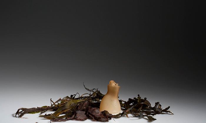 biodegradable-algae-water-bottle-ari-jonsson-1