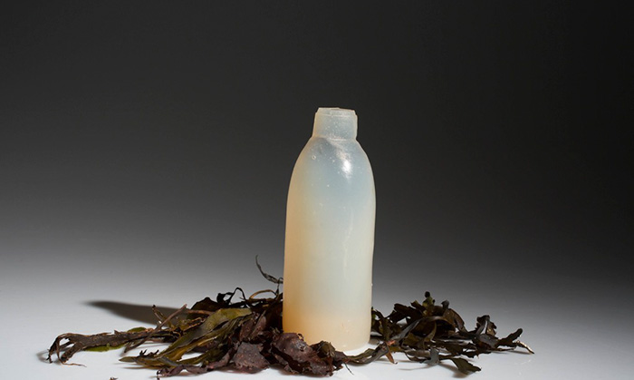 biodegradable-algae-water-bottle-ari-jonsson-4