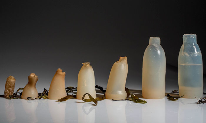 Man Invents Biodegradable Algae Water Bottles As A Green Alternative To Plastic