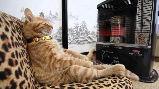 Warming Up Like A Boss